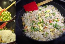 How to make Spicy Chicken Fried Rice in Pakistani Style